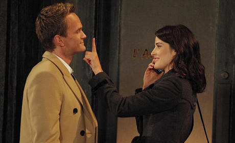 Barney Helps Robin
