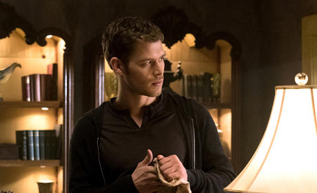 Klaus at the Bar - The Originals Season 2 Episode 18