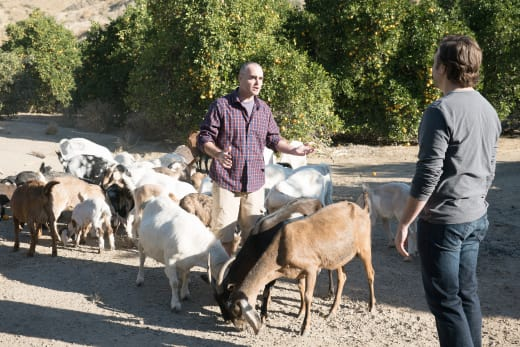 boy and girl goat - The Last Man on Earth Season 4 Episode 17