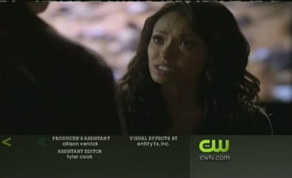 The Vampire Diaries Season Finale Trailer: Will Damon Survive?!