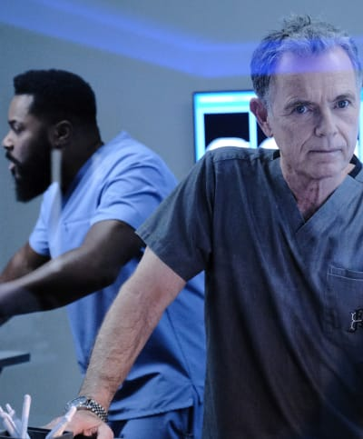 Bell and the Raptor -Tall  - The Resident Season 3 Episode 13