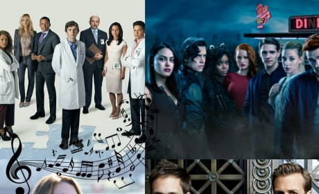 18 Catchy Tunes that Dominated TV in 2017!!