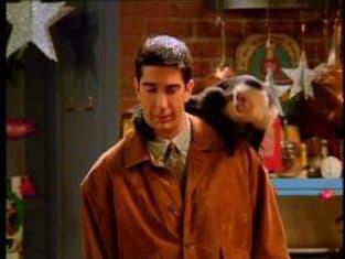 Friends Season 1 Episode 10: