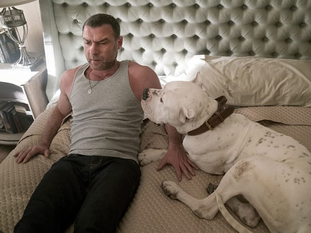 Abbys men ray donovan