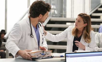 Grey's Anatomy Season 16 Episode 14 Review: A Diagnosis