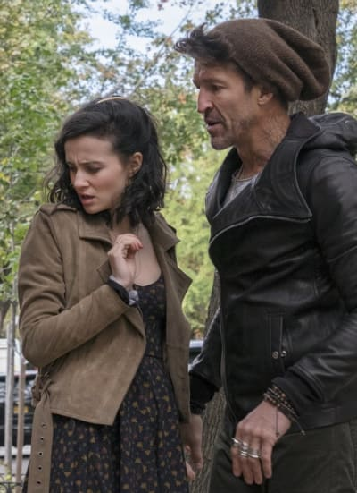 When Kats Attack - The Affair Season 3 Episode 7