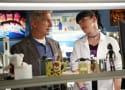 NCIS Spoilers: Gary Glasberg on Life Post-Ziva, Gibbs' Journey, Spinoff & More