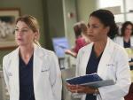 Sisters at Work - Grey's Anatomy