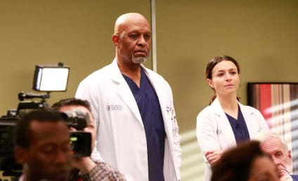 Watch Grey's Anatomy Online: Season 13 Episode 21