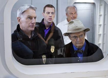 Watch NCIS Season 13 Episode 14 Online