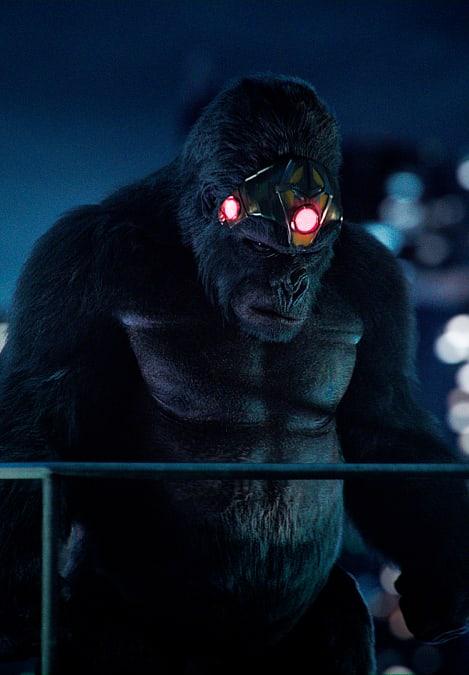 Gorilla Grodd Ready For A Fight - The Flash Season 5 Episode 15
