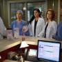 Awkward Alert! - Grey's Anatomy Season 13 Episode 14