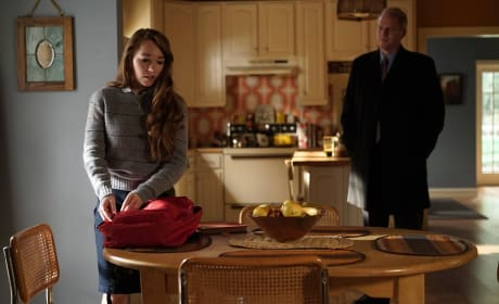 FBI in the House! - The Americans