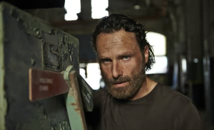 Andrew Lincoln Reunites With The Walking Dead Cast: 'I Wish I'd Never Left'