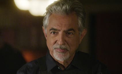 Criminal Minds Season 14 Episode 3 Review: Rule 34