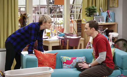 The Big Bang Theory: Watch Season 8 Episode 15 Online