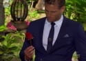 The Bachelor Season Finale Promo: The Perfect Fairy Tale Ending?