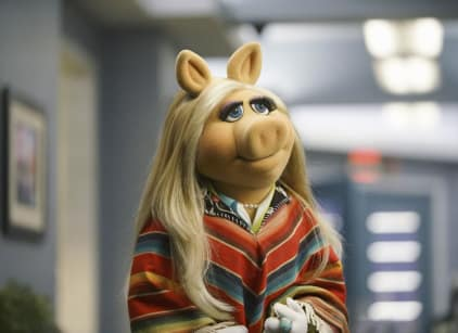 Watch The Muppets Season 1 Episode 11 Online