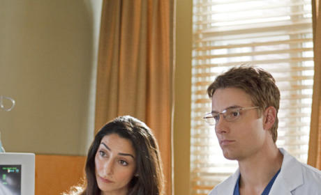Necar Azadegan and Justin Hartley