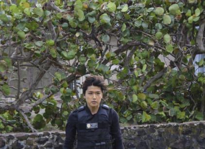 Watch Hawaii Five-0 Season 7 Episode 19 Online