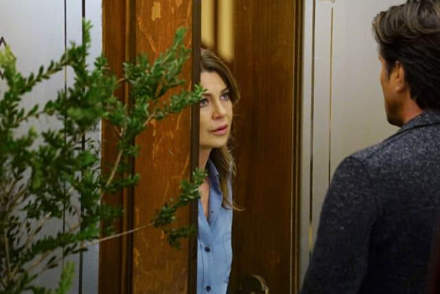 Who's There? - Grey's Anatomy Season 13 Episode 19