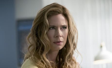 Skeptical Scientist - The Flash Season 3 Episode 20