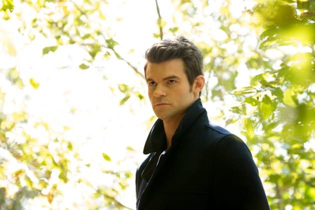 Elijah in the Woods