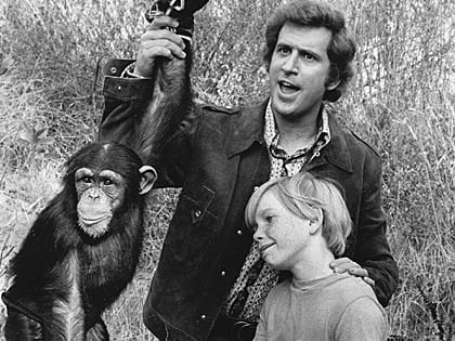 Me and the Chimp - 1972