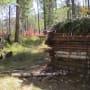 Randy and his Log Cabin - Alone Season 5 Episode 4