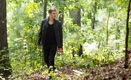Klaus in the Bayou - The Originals