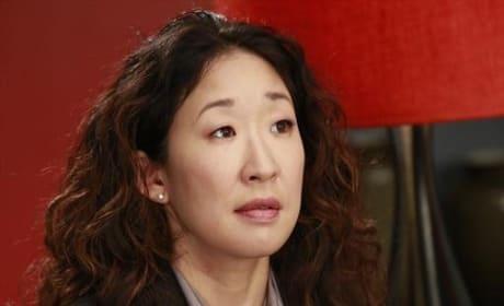 Dr. Cristina Yang Photograph