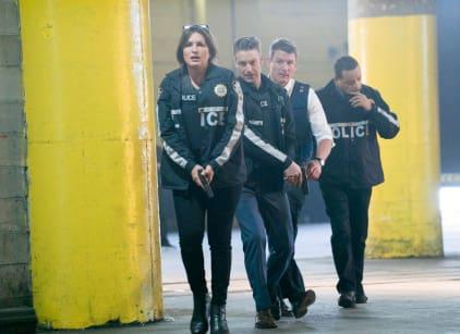 Watch Law & Order: SVU Season 19 Episode 23 Online
