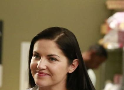 Watch Grey's Anatomy Season 13 Episode 13 Online