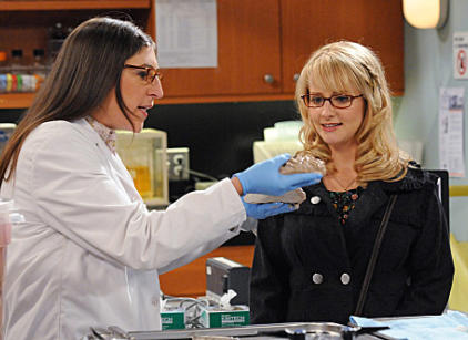 Watch The Big Bang Theory Season 5 Episode 8 Online