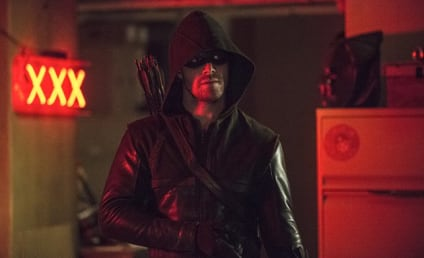 Arrow Season 3 Episode 8 Review: The Brave and the Bold