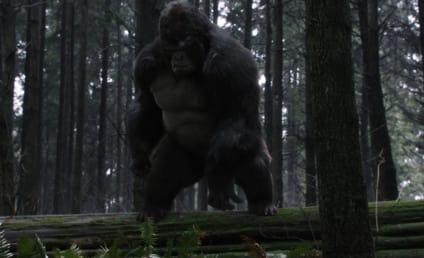 The Flash Season 3 Episode 13 Review: Attack on Gorilla City