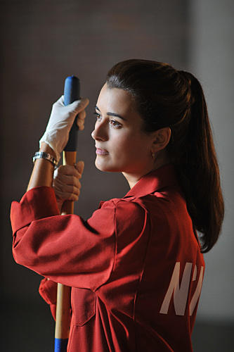 Ziva Cleans Up