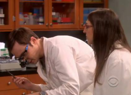 Watch The Big Bang Theory Season 5 Episode 16 Online