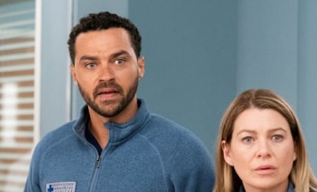 Presenting Catherine With a Case - Tall - Grey's Anatomy Season 15 Episode 20