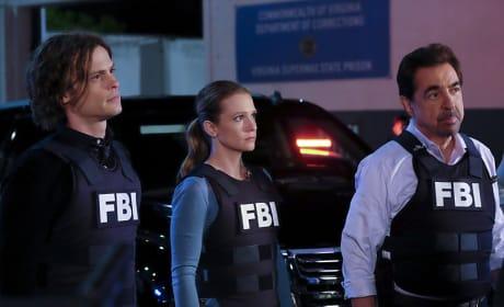 Working Together - Criminal Minds
