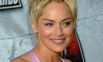 Sharon Stone Signs on for Law & Order: SVU Arc