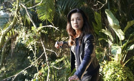 Who Will Survive? - Agents of S.H.I.E.L.D.