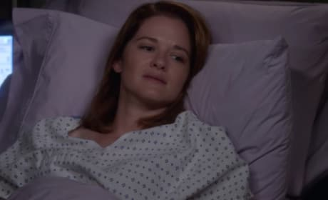 Grey\'s Anatomy Season 13 Episode 1: \