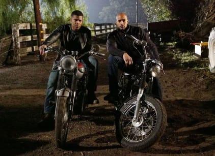 Watch Agents of S.H.I.E.L.D. Season 3 Episode 14 Online