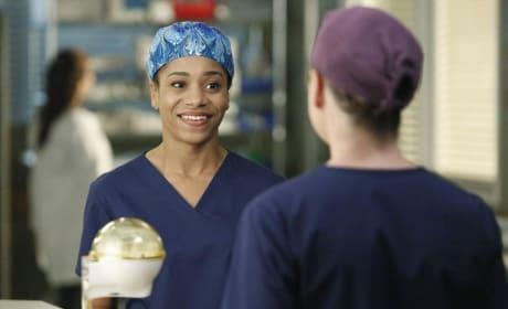 Making a Connection - Grey's Anatomy Season 11 Episode 11