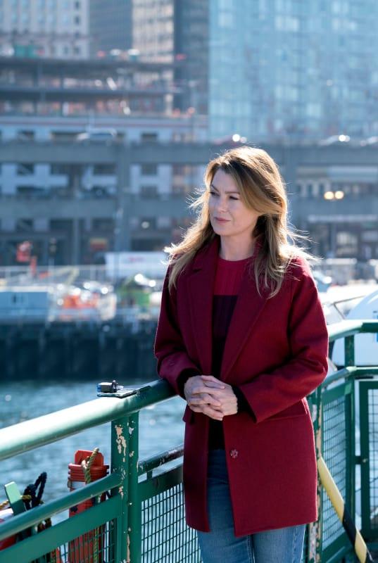 Meredith's Growth - Grey's Anatomy Season 14 Episode 7