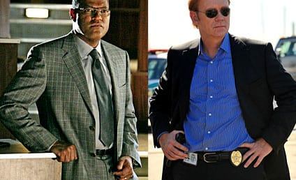 David Caruso Teases CSI Crossover Episode