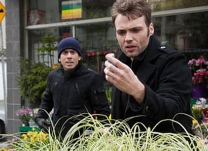 Watch Fringe Season 3 Episode 18 Online