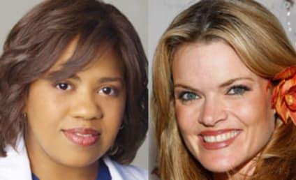 Missy Pyle Cast as Bailey's Boss on Grey's Anatomy: Circa 2000!