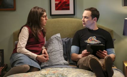 Watch The Big Bang Theory Online: Season 10 Episode 22